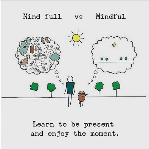 Memes, Mind, and 🤖: Mind full  Mindful  VS  Learn to be present  and enjoy the moment.  O o