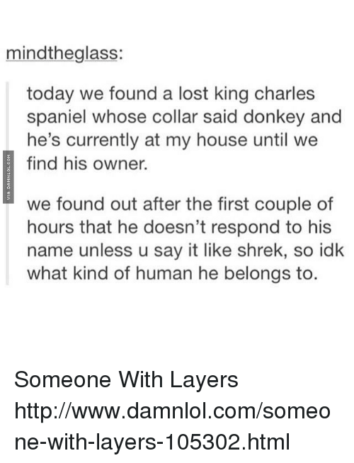 damnlol: mindthe glass:  today we found a lost king charles  spaniel whose collar said donkey and  he's currently at my house until we  find his owner.  we found out after the first couple of  hours that he doesn't respond to his  name unless u say it like shrek, so idk  what kind of human he belongs to. Someone With Layers http://www.damnlol.com/someone-with-layers-105302.html