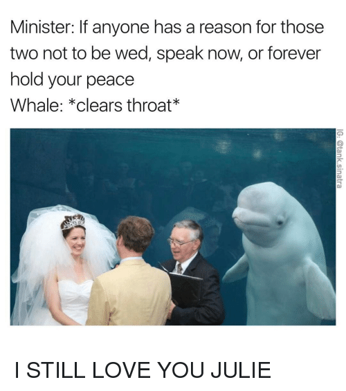 foreverly: Minister: lf anyone has a reason for those  two not to be wed, speak now, or forever  hold your peace  Whale: *clears throat I STILL LOVE YOU JULIE