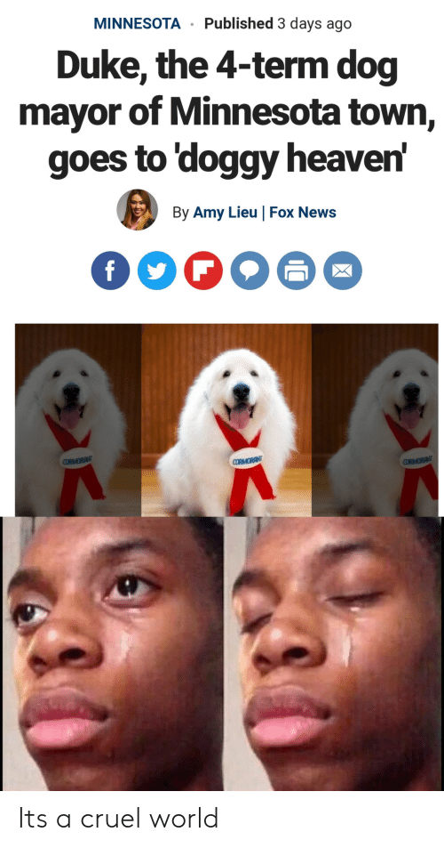 Heaven, News, and Duke: MINNESOTA Published 3 days ago  Duke, the 4-term dog  mayor of Minnesota town,  goes to 'doggy heaven  By Amy Lieu |Fox News Its a cruel world