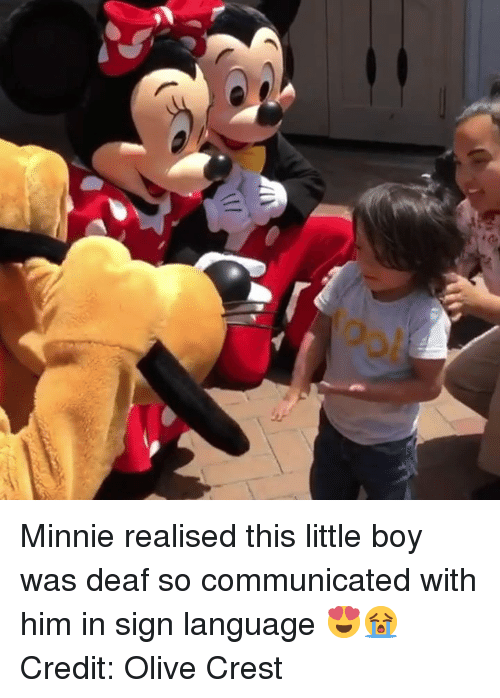 crest: Minnie realised this little boy was deaf so communicated with him in sign language 😍😭  Credit: Olive Crest