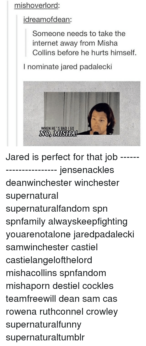 Jared Padalecki: mishoverlord:  idreamofdean:  Someone needs to take the  internet away from Misha  Collins before he hurts himself.  I nominate jared padalecki  WHEN HE'S BAD GO  No,  MISHAI Jared is perfect for that job ---------------------- jensenackles deanwinchester winchester supernatural supernaturalfandom spn spnfamily alwayskeepfighting youarenotalone jaredpadalecki samwinchester castiel castielangelofthelord mishacollins spnfandom mishaporn destiel cockles teamfreewill dean sam cas rowena ruthconnel crowley supernaturalfunny supernaturaltumblr