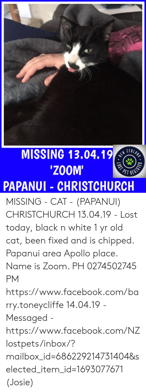 Facebook, Memes, and Lost: MISSING 13.04.1%  ZOOM'  PAPANUI - CHRISTCHURCH MISSING - CAT - (PAPANUI) CHRISTCHURCH  13.04.19 - Lost today, black n white 1 yr old cat, been fixed and is chipped. Papanui area Apollo place. Name is Zoom.   PH  0274502745 PM https://www.facebook.com/barry.toneycliffe  14.04.19 - Messaged - https://www.facebook.com/NZlostpets/inbox/?mailbox_id=686229214731404&selected_item_id=1693077671  (Josie)