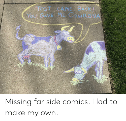 missing: Missing far side comics. Had to make my own.