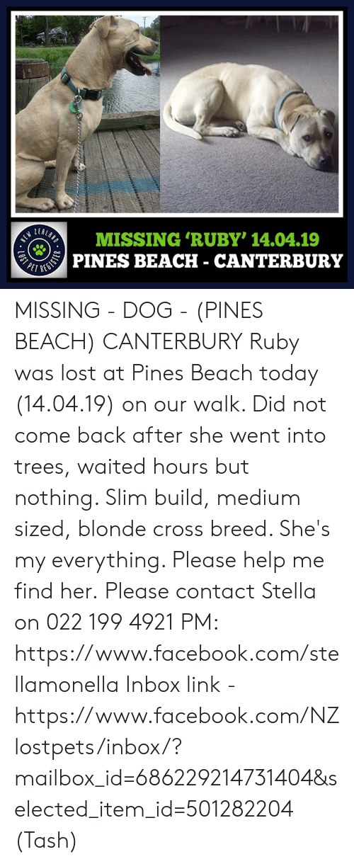 Facebook, Memes, and Lost: MISSING 'RUBY' 14.04.19  PINES BEACh - CantErbuRv MISSING - DOG - (PINES BEACH) CANTERBURY  Ruby was lost at Pines Beach today (14.04.19) on our walk. Did not come back after she went into trees, waited hours but nothing. Slim build, medium sized, blonde cross breed. She's my everything. Please help me find her.  Please contact Stella on 022 199 4921 PM: https://www.facebook.com/stellamonella  Inbox link - https://www.facebook.com/NZlostpets/inbox/?mailbox_id=686229214731404&selected_item_id=501282204  (Tash)