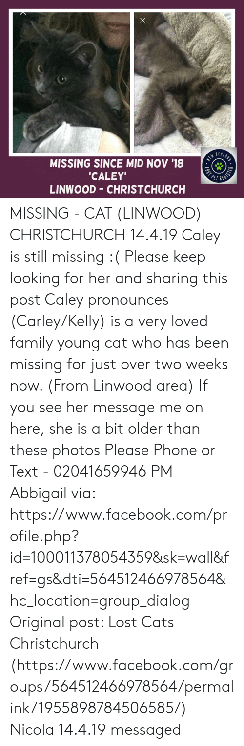 Cats, Facebook, and Family: MISSING SINCE MID NOV '18  CALEY  LINWOOD CHRISTCHURCH MISSING - CAT (LINWOOD) CHRISTCHURCH  14.4.19 Caley is still missing :(  Please keep looking for her and sharing this post  Caley pronounces (Carley/Kelly) is a very loved family young cat who has been missing for just over two weeks now. (From Linwood area)  If you see her message me on here, she is a bit older than these photos   Please Phone or Text - 02041659946  PM Abbigail via: https://www.facebook.com/profile.php?id=100011378054359&sk=wall&fref=gs&dti=564512466978564&hc_location=group_dialog  Original post: Lost Cats Christchurch (https://www.facebook.com/groups/564512466978564/permalink/1955898784506585/) Nicola  14.4.19 messaged