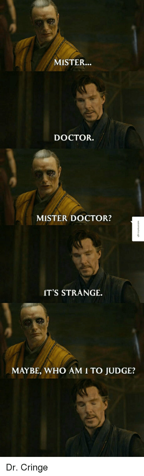Doctor, Reddit, and Who Am I: MISTER.  DOCTOR.  MISTER DOCTOR?  IT'S STRANGE.  MAYBE, WHO AM I TO JUDGE?