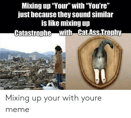 """You Re Meme: Mixing up Your"""" with You're""""  just because they sound similar  is like mixing up  Catastrophe with Cat ASs Trophy Mixing up your with youre meme"""