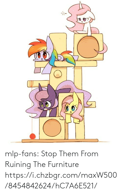 mlp: mlp-fans:  Stop Them From Ruining The Furniture https://i.chzbgr.com/maxW500/8454842624/hC7A6E521/
