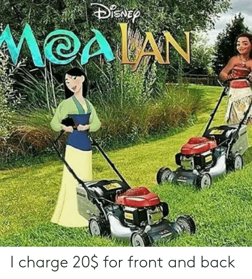 moan: MOAN I charge 20$ for front and back