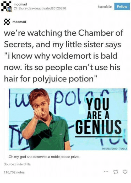 "God, Memes, and Oh My God: modmad  tumblr  Follow  thurs-day-deactivated20120810  modmad  we're watching the Chamber of  Secrets, and my little sister says  ""i know why voldemort is bald  now. its so people can't use his  hair for polyjuice potion""  YOU  ARE A  GENIUS  THEGREATGAME-ITBL  Oh my god she deserves a noble peace prize.  Source:cinderdrilla  116,702 notes"