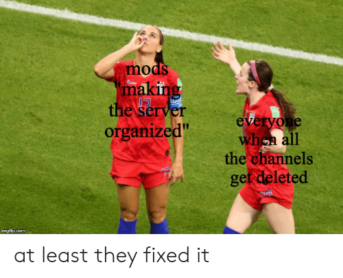 Mods Making the Server Organized Everyone When All the Channels Get