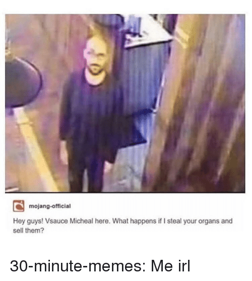 Mojang: mojang-official  Hey guys! Vsauce Micheal here. What happens if I steal your organs and  sell them? 30-minute-memes:  Me irl