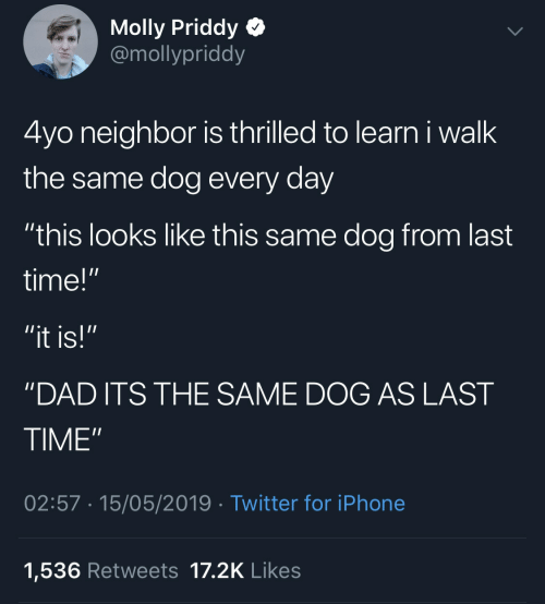 """thrilled: Molly Priddy  @mollypriddy  4yo neighbor is thrilled to learn i walk  the same dog every day  """"this looks like this same dog from last  time!""""  """"it is!""""  'DAD ITS THE SAME DOG AS LAST  TIME""""  02:57 15/05/2019 Twitter for iPhone  1,536 Retweets 17.2K Likes"""