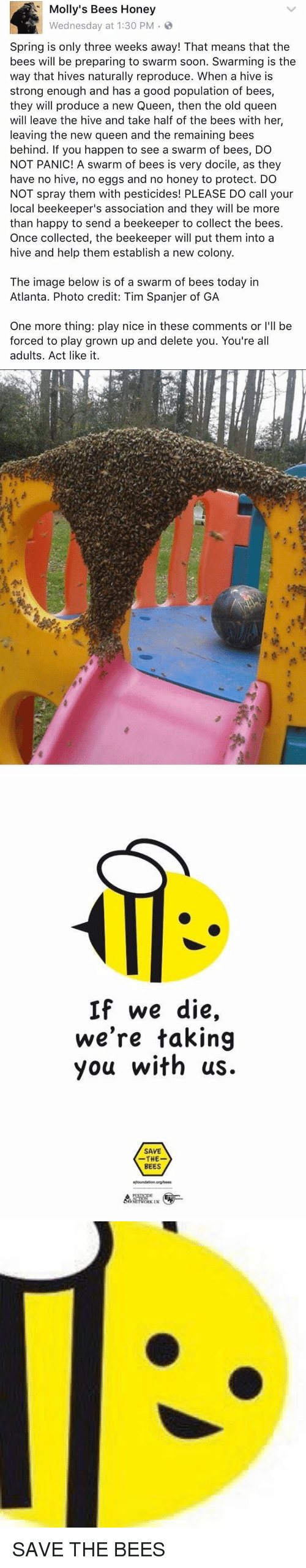 """Girl Memes, Collective, and Act: Molly's Bees Honey  Wednesday at 1:30 PM  Spring is only three weeks away! That means that the  bees will be preparing to swarm soon. Swarming is the  way that hives naturally reproduce. When a hive is  strong enough and has a good population of bees,  they will produce a new Queen, then the old queen  will leave the hive and take half of the bees with her  leaving the new queen and the remaining bees  behind. If you happen to see a swarm of bees, DO  NOT PANIC! A swarm of bees is very docile, as they  have no hive, no eggs and no honey to protect  DO  NOT spray them with pesticides! PLEASE DO call your  local beekeeper's association and they will be more  than happy to send a beekeeper to collect the bees  Once collected, the beekeeper will put them into a  hive and help them establish a new colony  The image below is of a swarm of bees today in  Atlanta. Photo credit: Tim Spanjer of GA  One more thing: play nice in these comments or l'll be  forced to play grown up and delete you. You're all  adults. Act like it   筍  > es""""おや  k@  H:  as   If we die,  we're taking  you with us.  SAVE  THE  BEES SAVE THE BEES"""
