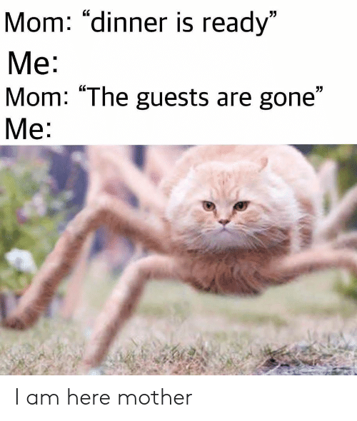 """Mom, Mother, and Gone: Mom: """"dinner is ready""""  Me:  Mom: """"The guests are gone""""  Мe: I am here mother"""