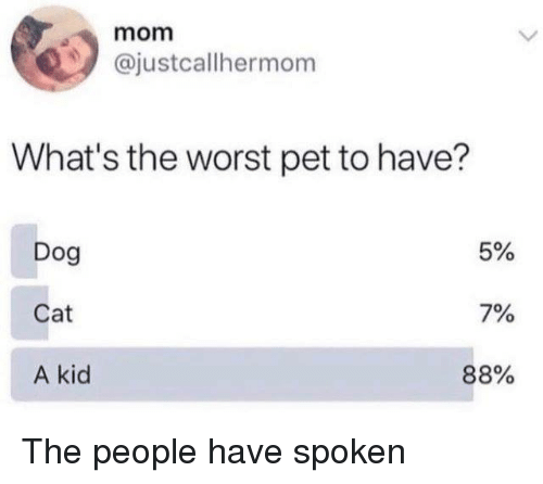 Mom What's the Worst Pet to Have? Dog Cat a Kid 5% 7% 88