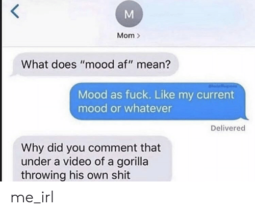 "Af, Mood, and Shit: Mom  What does ""mood af"" mean?  Mood as fuck. Like my current  mood or whatever  Delivered  Why did you comment that  under a video of a gorilla  throwing his own shit  M me_irl"