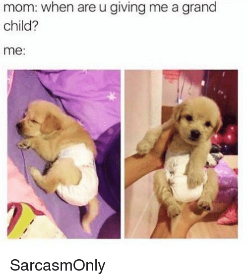 Funny, Memes, and Grand: mom: when are u giving me a grand  child?  me: SarcasmOnly
