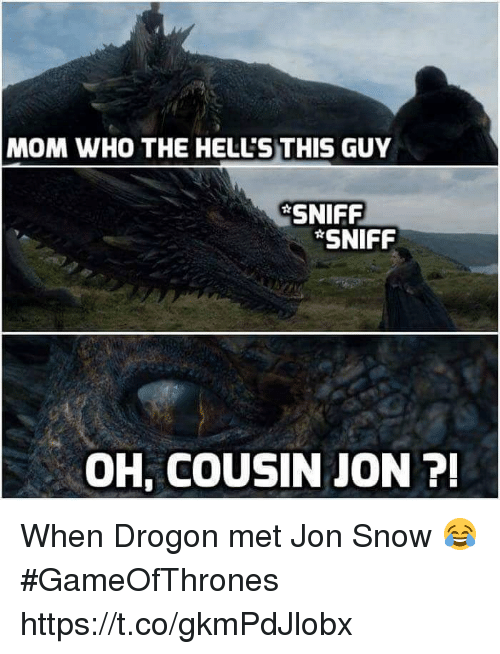 sniff sniff: MOM WHO THE HELL'S THIS GUY  SNIFF  SNIFF  OH, COUSIN JON 7 When Drogon met Jon Snow 😂 #GameOfThrones https://t.co/gkmPdJlobx
