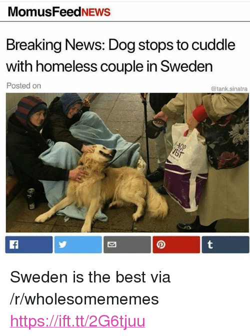 """Homeless, News, and Best: MomusFeedNEws  Breaking News: Dog stops to cuddle  with homeless couple in Sweden  Posted on  @tank.sinatra <p>Sweden is the best via /r/wholesomememes <a href=""""https://ift.tt/2G6tjuu"""">https://ift.tt/2G6tjuu</a></p>"""