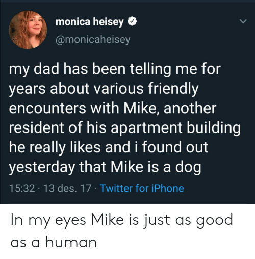 He Really: monica heisey  @monicaheisey  my dad has been telling me for  years about various friendly  encounters with Mike, another  resident of his apartment building  he really likes and i found out  yesterday that Mike is a dog  15:32 13 des. 17 Twitter for iPhone In my eyes Mike is just as good as a human