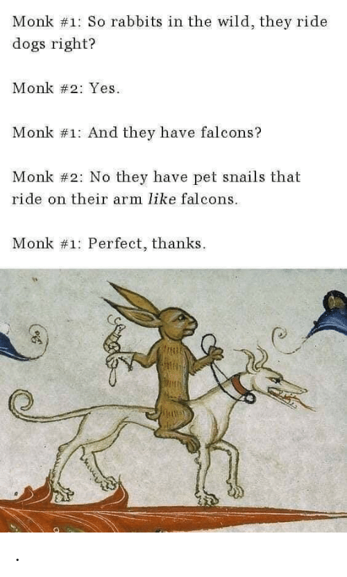 Dogs, Falcons, and Wild: Monk #1: So rabbits in the wild, they ride  dogs right?  Monk #2: Yes  Monk #1: And they have falcons?  Monk #2: No they have pet snails that  ride on their arm like falcons  Monk #1: Perfect, thanks .
