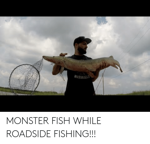 Monster, Fish, and Fishing: MONSTER FISH WHILE ROADSIDE FISHING!!!