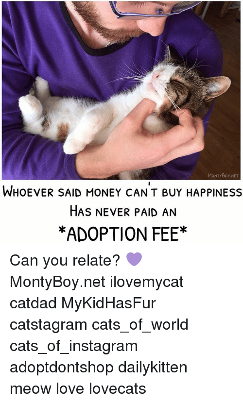 Meowe: MONTYBoY.NET  WHOEVER SAID MONEY CANT BUY HAPPINESS  HAS NEVER PAID AN  *ADOPTION FEE* Can you relate? 💜 MontyBoy.net ilovemycat catdad MyKidHasFur catstagram cats_of_world cats_of_instagram adoptdontshop dailykitten meow love lovecats