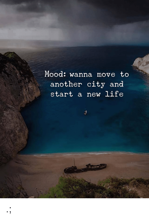 Life, Mood, and Another: Mood: wanna move to  another city and  start a new life .;