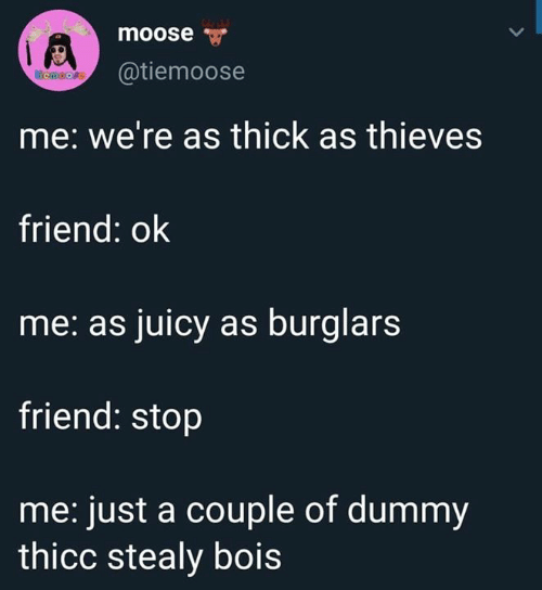Juicy: moose  @tiemoose  emoore  me: we're as thick as thieves  friend: ok  me: as juicy as burglars  friend: stop  me: just a couple of dummy  thicc stealy bois