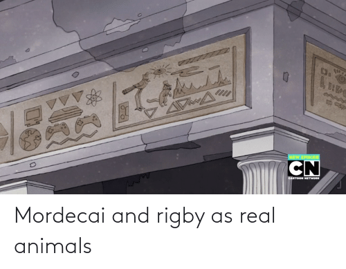 rigby: Mordecai and rigby as real animals