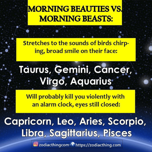 MORNING BEAUTIES VS MORNING BEASTS Stretches to the Sounds