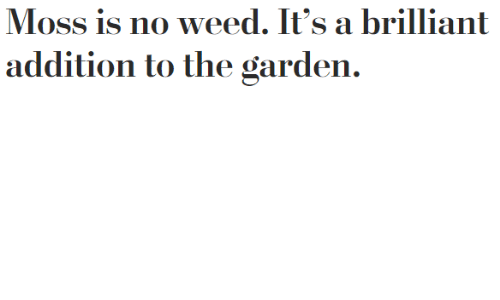 Weed, Brilliant, and Moss: Moss is no weed. It's a brilliant  addition to the garden.