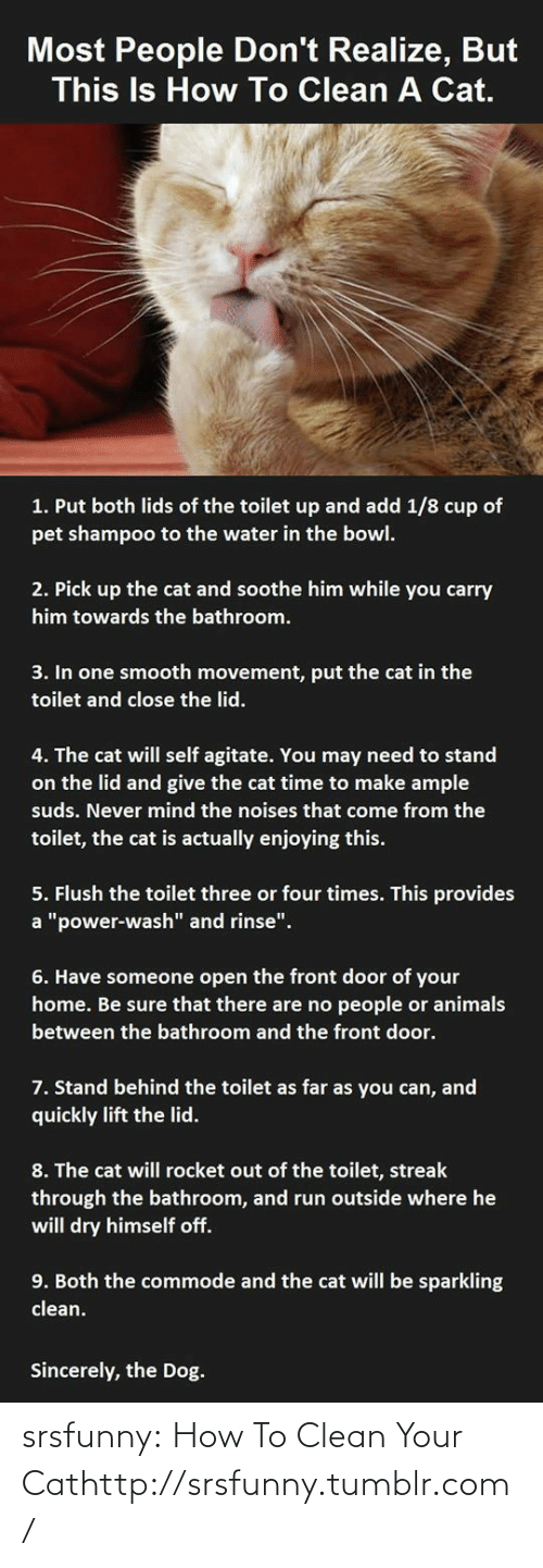 """How To Clean: Most People Don't Realize, But  This Is How To Clean A Cat.  1. Put both lids of the toilet up and add 1/8 cup of  pet shampoo to the water in the bowl.  2. Pick up the cat and soothe him while you carry  him towards the bathroom.  3. In one smooth movement, put the cat in the  toilet and close the lid.  4. The cat will self agitate. You may need to stand  on the lid and give the cat time to make ample  suds. Never mind the noises that come from the  toilet, the cat is actually enjoying this.  5. Flush the toilet three or four times. This provides  a """"power-wash"""" and rinse"""".  6. Have someone open the front door of your  home. Be sure that there are no people or animals  between the bathroom and the front door.  7. Stand behind the toilet as far as you can, and  quickly lift the lid.  8. The cat will rocket out of the toilet, streak  through the bathroom, and run outside where he  will dry himself off.  9. Both the commode and the cat will be sparkling  clean.  Sincerely, the Dog. srsfunny:  How To Clean Your Cathttp://srsfunny.tumblr.com/"""
