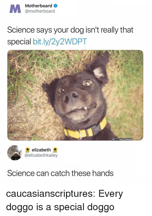 Petty, Tumblr, and Blog: Motherboard  @motherboard  Science says your dog isn't really that  special bit.ly/2y2WDPT  PETTY MAYONNAISE  elizabeth  @elizabethkailey  Science can catch these hands caucasianscriptures:  Every doggo is a special doggo