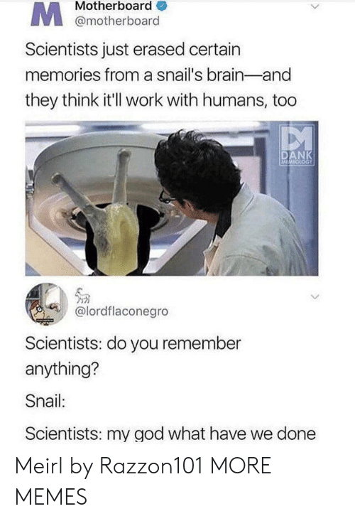 Dank, God, and Memes: Motherboard  @motherboard  Scientists just erased certain  memories from a snail's brain-and  they think it'l work with humans, too  DANK  MOOGY  @lordflaconegro  Scientists: do you remember  anything?  Snail:  Scientists: my god what have we done Meirl by Razzon101 MORE MEMES