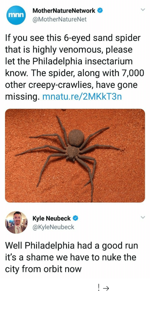 A Shame: MotherNatureNetwork  @MotherNatureNet  mnn  If you see this 6-eyed sand spider  that is highly venomous, please  let the Philadelphia insectarium  know. The spider, along with 7,000  other creepy-crawlies, have gone  missing. mnatu.re/2MKkT3n  ич Ja Kyle Neubeck@  @KyleNeubeck  Well Philadelphia had a good run  it's a shame we have to nuke the  city from orbit now 𝘍𝘰𝘭𝘭𝘰𝘸 𝘮𝘺 𝘗𝘪𝘯𝘵𝘦𝘳𝘦𝘴𝘵! → 𝘤𝘩𝘦𝘳𝘳𝘺𝘩𝘢𝘪𝘳𝘦𝘥