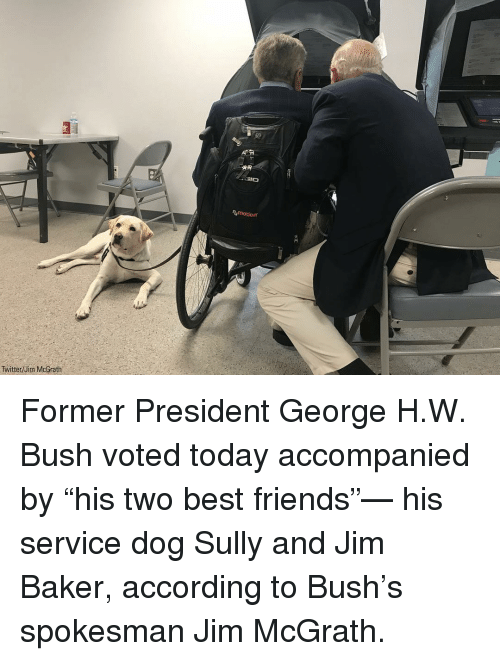 "George H. W. Bush: motion  Twitter/Jim McGrath Former President George H.W. Bush voted today accompanied by ""his two best friends""— his service dog Sully and Jim Baker, according to Bush's spokesman Jim McGrath."