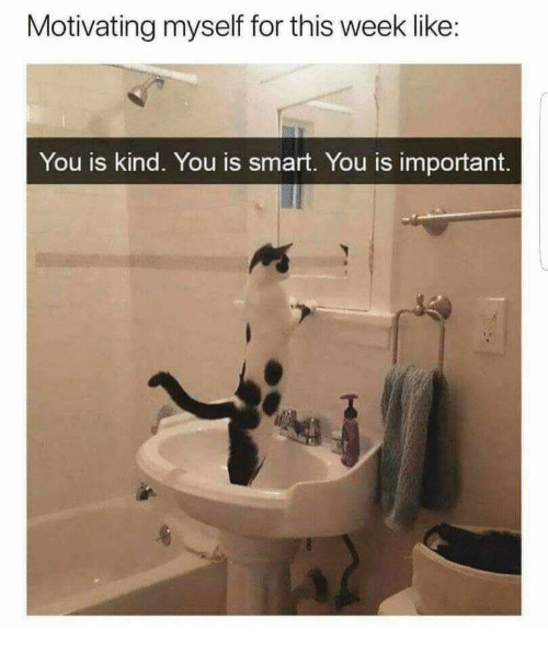 You Is Kind: Motivating myself for this week like:  You is kind. You is smart. You is important.