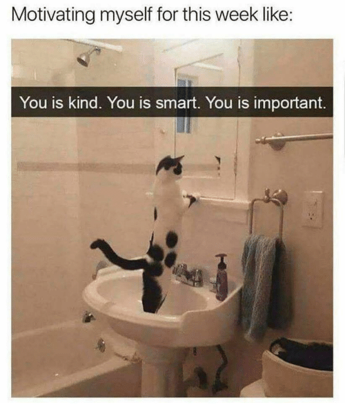 You Is Kind: Motivating myself for this week like  You is kind. You is smart. You is important.