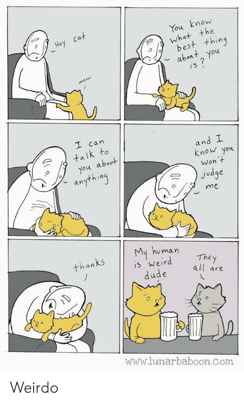 Com, Judge, and Can: mow  the  ou  est t+hing  bot you  can  an  k to  know you  about  Won  Judge  an  me  u man  The y  all are  an  5 Wer  www.lunarbaboon.com Weirdo