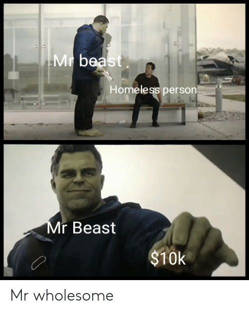 bea: Mr bea  Homeless person  r Beast  $10k Mr wholesome
