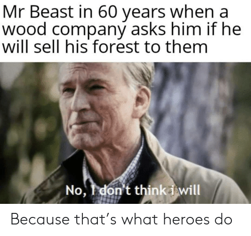 beast: Mr Beast in 60 years when a  wood company asks him if he  will sell his forest to them  No, don't thinki will Because that's what heroes do