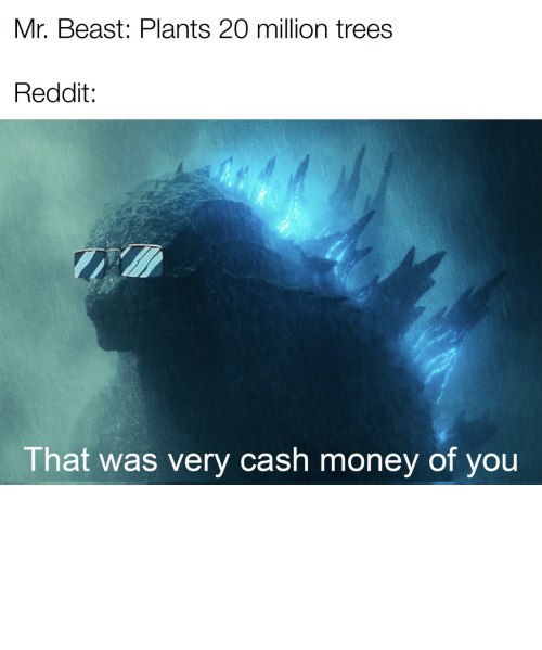 Godzilla: Mr. Beast: Plants 20 million trees  Reddit:  That was very cash money of you *happy Godzilla noises by AwkwardChaos7 MORE MEMES