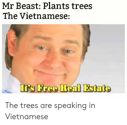 Vietnamese: Mr Beast: Plants trees  The Vietnamese:  It's Free Real Estate The trees are speaking in Vietnamese