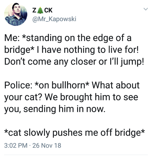 Police, Live, and Humans of Tumblr: @Mr_Kapowski  Me: *standing on the edge ofa  bridge* I have nothing to live for!  Don't come any closer or l'll jump!  Police: *on bullhorn* What about  your cat? We brought him to see  you, sending him in noW  *cat slowly pushes me off bridge*  3:02 PM 26 Nov 18