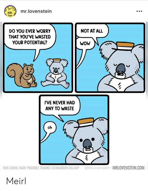Wow, Never, and MeIRL: mr.lovenstein  NOT AT ALL  DO YOU EVER WORRY  THAT YOU'VE WASTED  YOUR POTENTIAL?  WoW  I'VE NEVER HAD  ANY TO WASTE  oh  @MrLovenstein MRLOVENSTEIN.COM  THIS COMIC MADE POSSIBLE THANKS TO BRANDON DELAMP Meirl