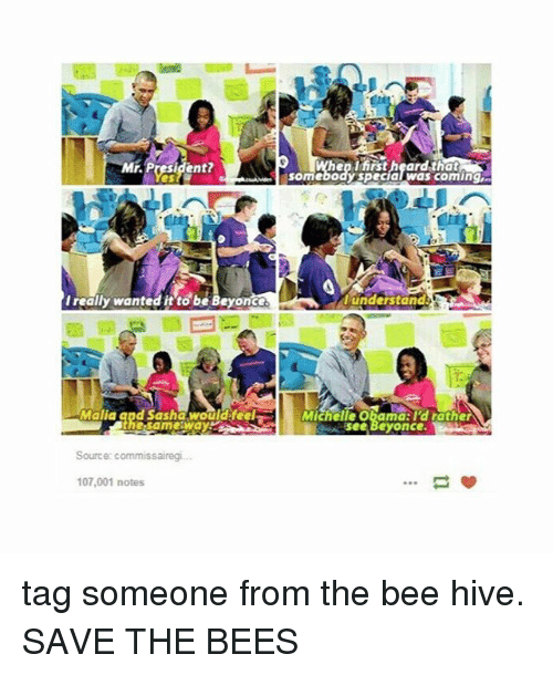 Beyonce, Tumblr, and Tag Someone: Mr. President  en tirst heardthat  somebody specialwas coming  I really wanted it to be Beyonce  understand  Malia and Sasha wouldifeel  Michelle Obamd:l'd rather  see Beyonce  Source: commissairegi.  107,001 notes tag someone from the bee hive. SAVE THE BEES