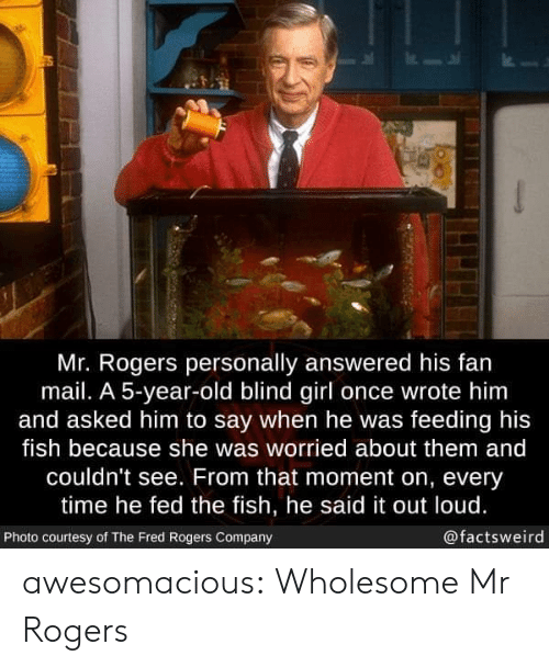 courtesy: Mr. Rogers personally answered his fan  mail. A 5-year-old blind girl once wrote him  and asked him to say when he was feeding his  fish because she was worried about them and  couldn't see. From that moment on, every  time he fed the fish, he said it out loud.  @factsweird  Photo courtesy of The Fred Rogers Company awesomacious:  Wholesome Mr Rogers
